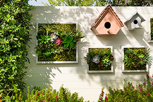 Decorated wall vertical garden, Background.